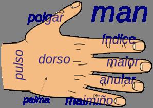 Imagen26